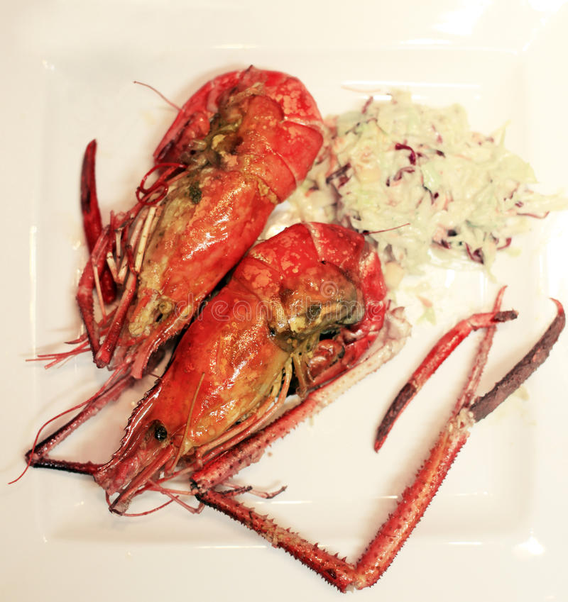 Two prawns stock photo