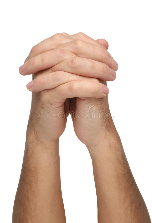 Download Two praying hands isolated stock image. Image of positive - 42835381