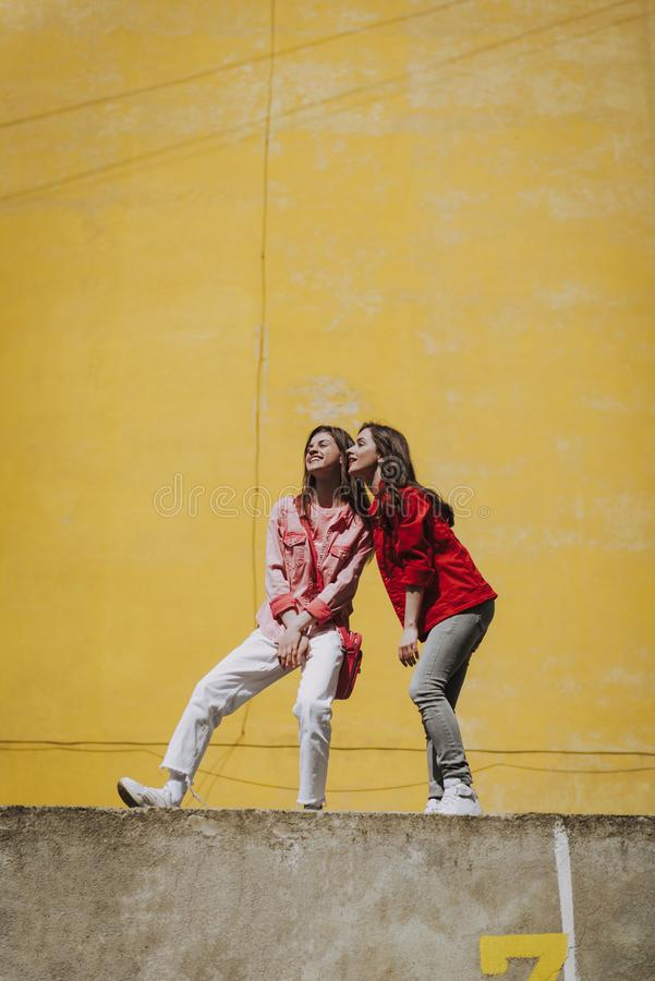 Two pretty cheerful hipster girls on parapet stock photography