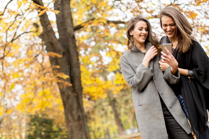 Two pretty young women using mobile phone in the autumn forest royalty free stock images