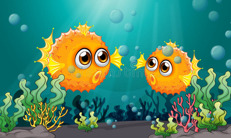 Two puffer fishes under the sea stock illustration