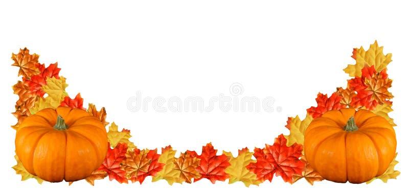 Download Two pumpkin border stock image. Image of leaves, season - 3359835