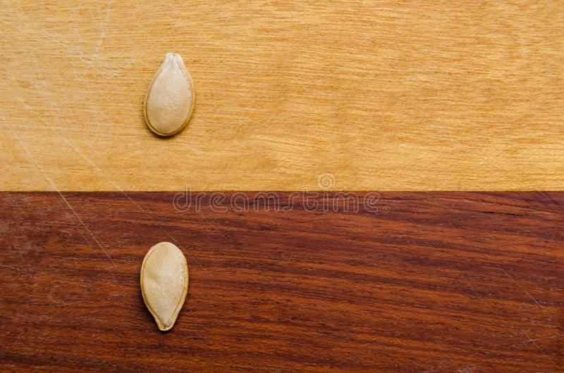 Two pumpkin seeds on a two-colored wooden surface, one in each color opposing the other. Two pumpkin seeds on a two-colored wooden surface, one in each color royalty free stock photography