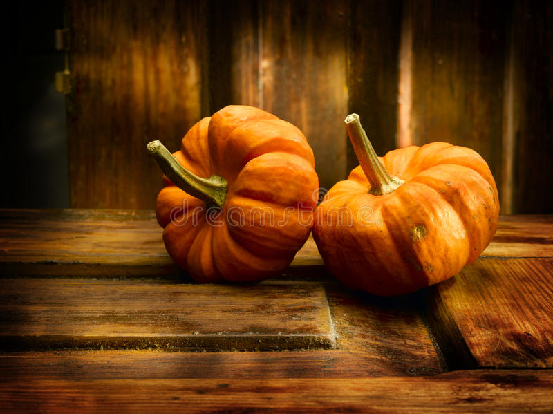 Download Two Pumpkins stock image. Image of isolated, fall, vegetable - 14853893