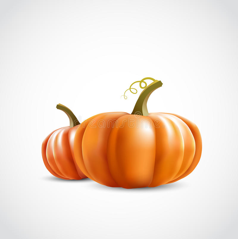 Free Two Pumpkins Royalty Free Stock Image - 27015876