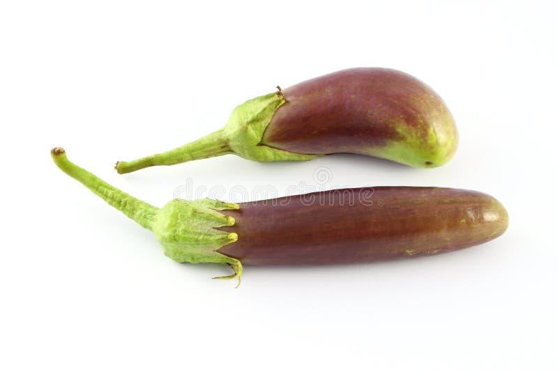 Two purple eggplants