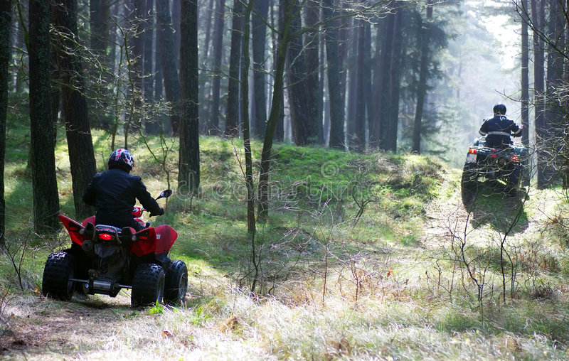 Two quads in forest (ATV) stock image