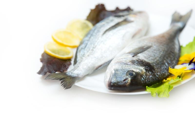 Two raw fresh dorado fish with spices and lemon on a white table. Two raw fresh dorado fish with spices and lemon in a plate before cooking on a white table stock photo