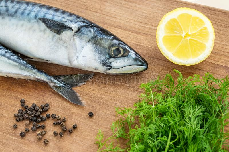 Two raw mackerels, fresh dill, black peppercorns and lemon on a brown wooden cutting board. Seafood, healthy eating and cook at royalty free stock images