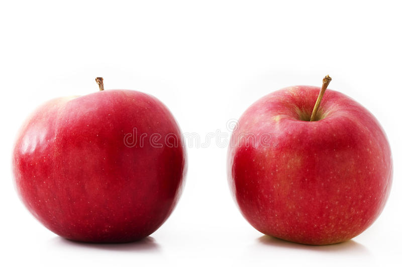 Two red apples stock photos