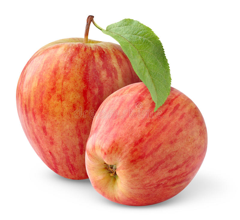 Isolated red apples stock images