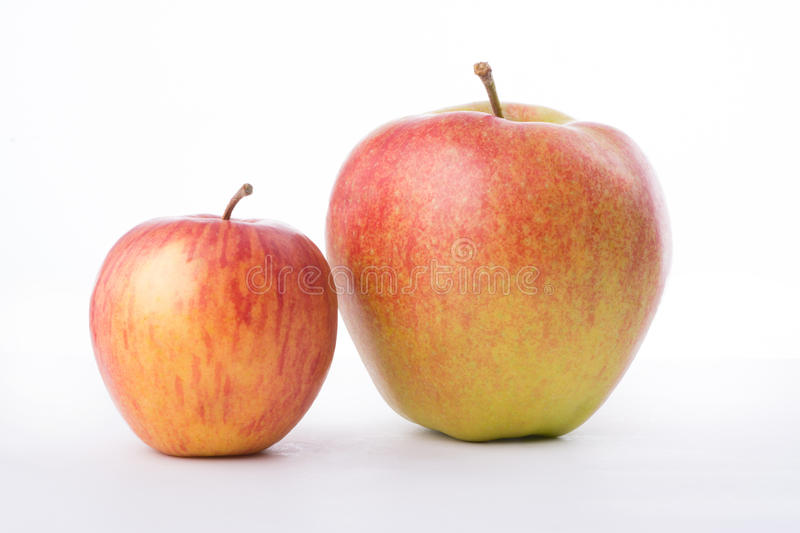 Two red apples on white background.  royalty free stock image
