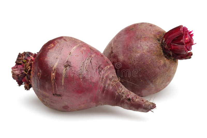 Two red beet roots isolated on white stock image