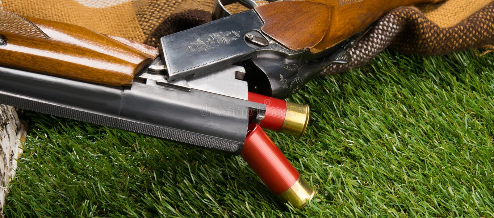Two red bullets for a gun, fell on a green lawn stock image