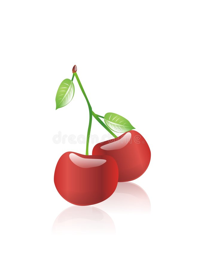 Two red cherry. With green leafes surrounding by white background stock illustration