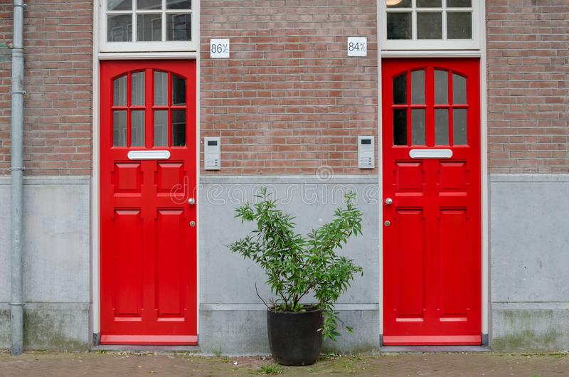 Two red doors on the facade of the house.  Big street flowerpot with green plant. Amsterdam Oost. East side neighbourhoods.  stock photo