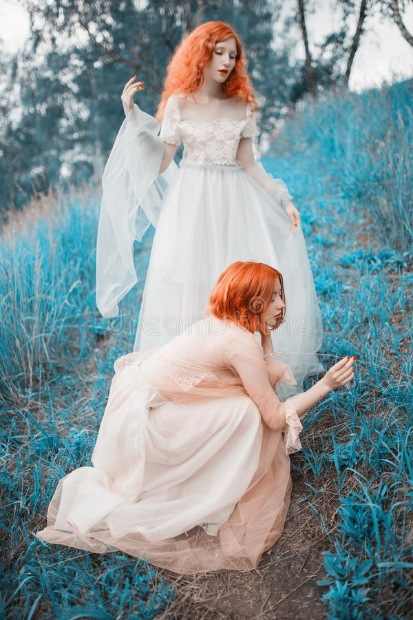 Two red-haired girls in free dresses of tulle on the background of a summer ravine. stock photo
