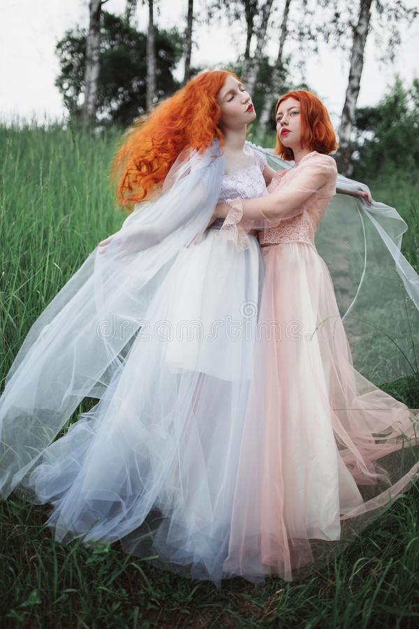 Two red-haired girls in free dresses of tulle on the background of a summer ravine. royalty free stock photo