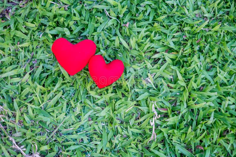 Two red hearts on a lawn background. Holiday Valentine`s Day, wedding stock image