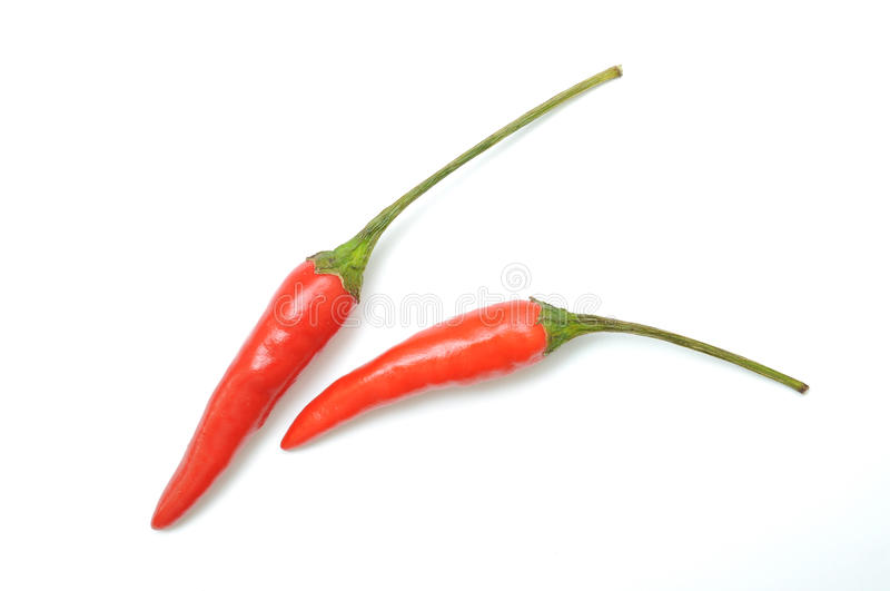 Download Two Red Hot Chilli Peppers Royalty Free Stock Image - Image: 24922216