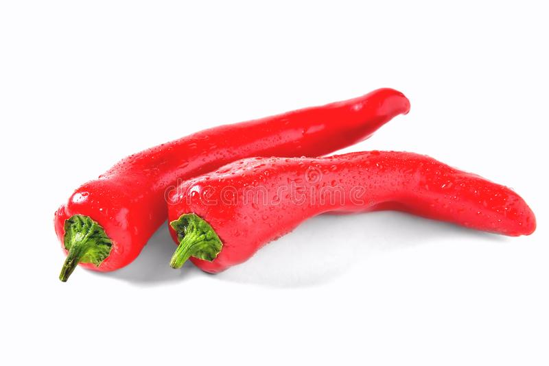 Two red peppers on white background with drops of water, isolate royalty free stock image