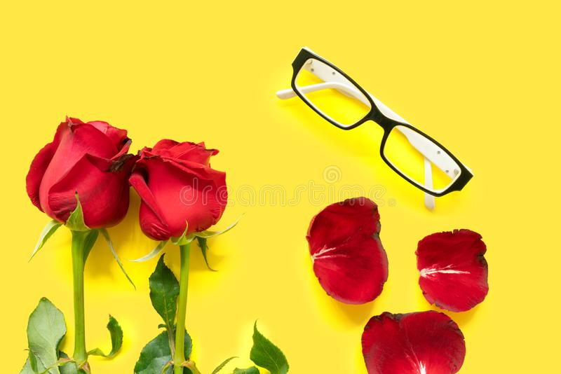 Two red roses, eye glasses and rose petals on yellow background. Two red roses, eye glasses and rose petals isolated on yellow background royalty free stock photo