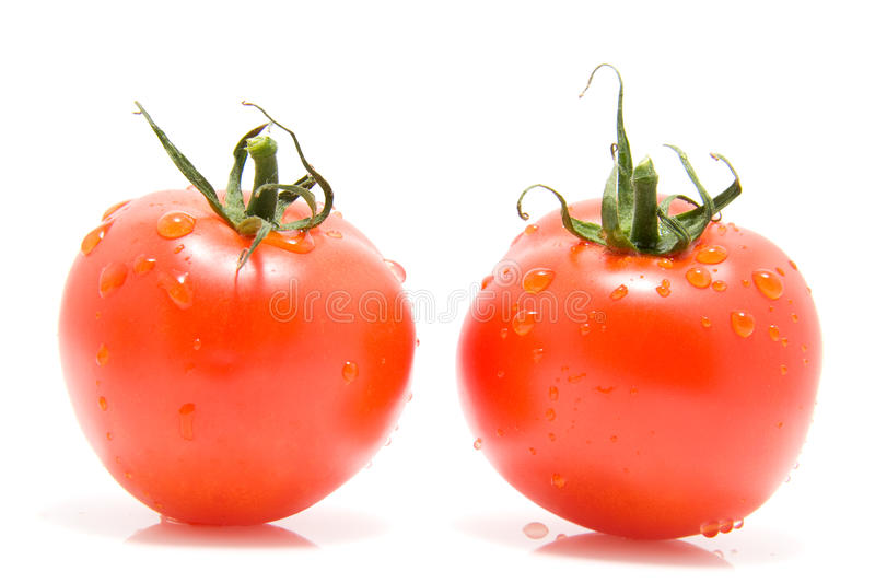 Two red tomatoes. With water drops isolated on white background stock images