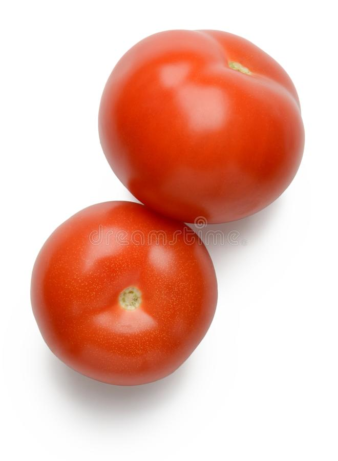 Two red tomatoes on white. Background royalty free stock images