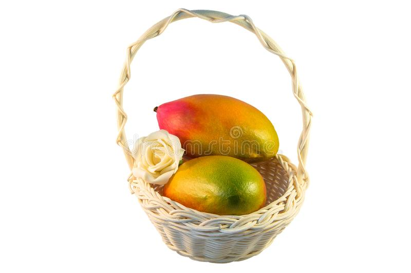 Two red and yellow mangoes in a basket on white isolated background royalty free stock photo
