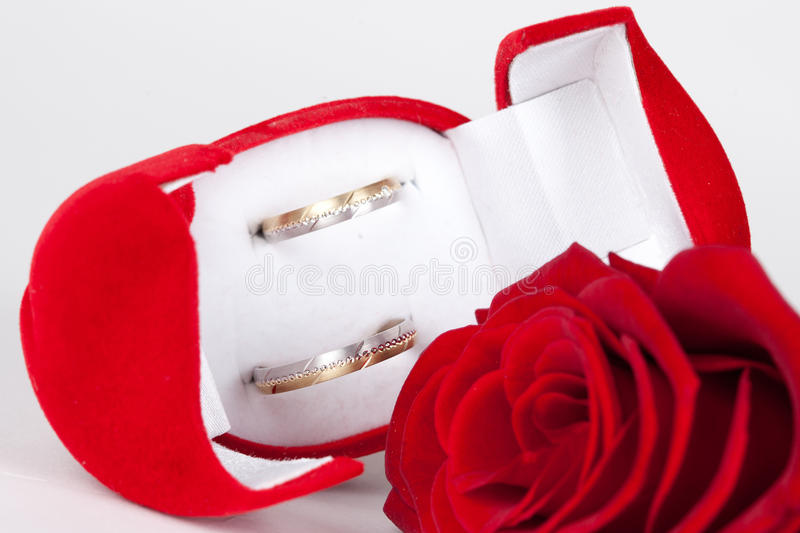 Download Two rings stock photo. Image of golden, celebration, engagement - 24310826