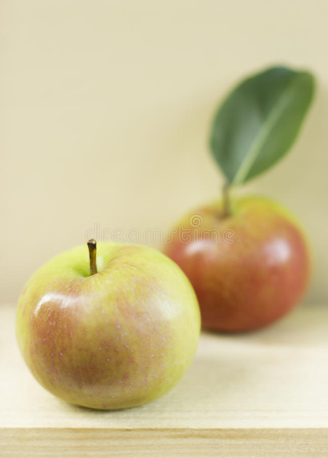 Two ripe apples royalty free stock image