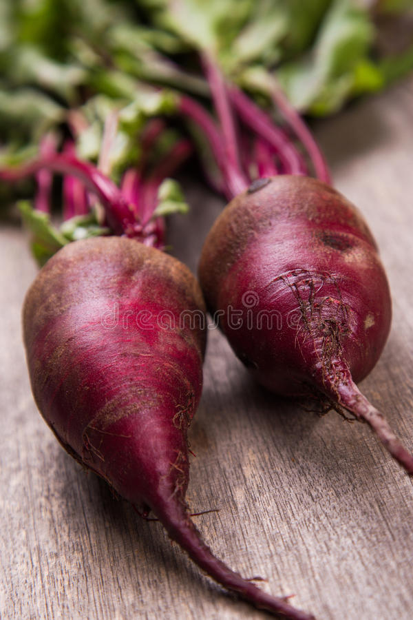 Two ripe beet. Two fresh ripe beet on wooden background in studio stock image