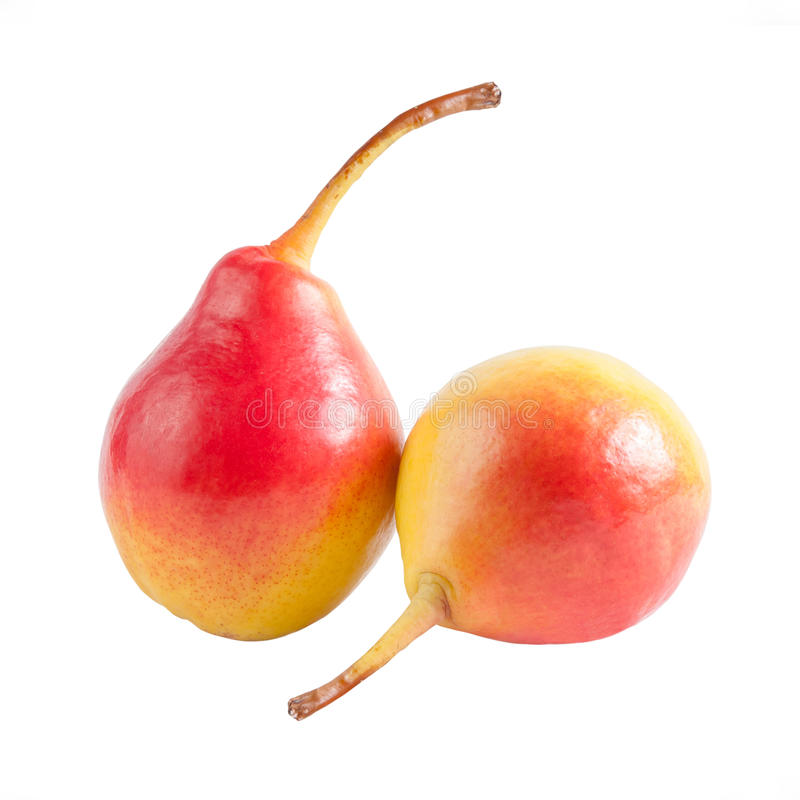 Download Two ripe pears stock photo. Image of fresh, path, good - 26056168