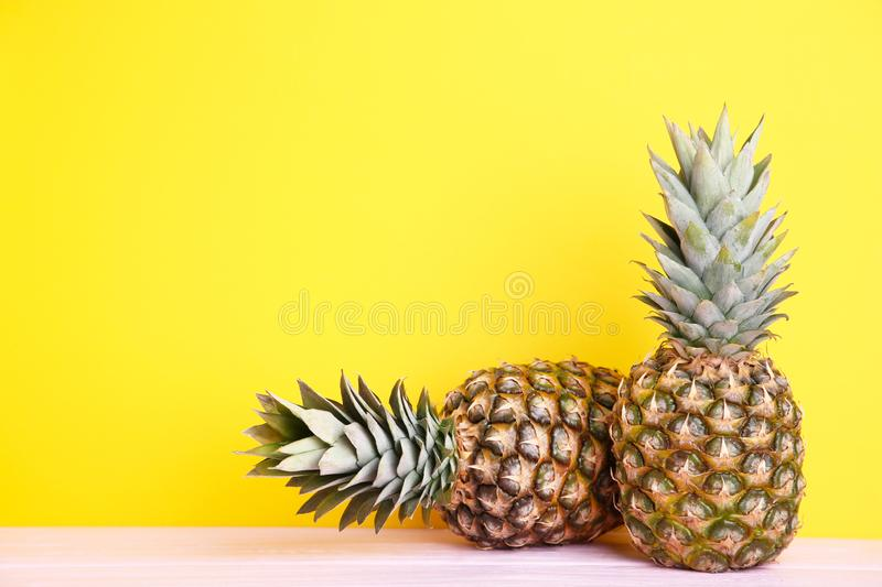 Two ripe pineapples on a yellow background stock image