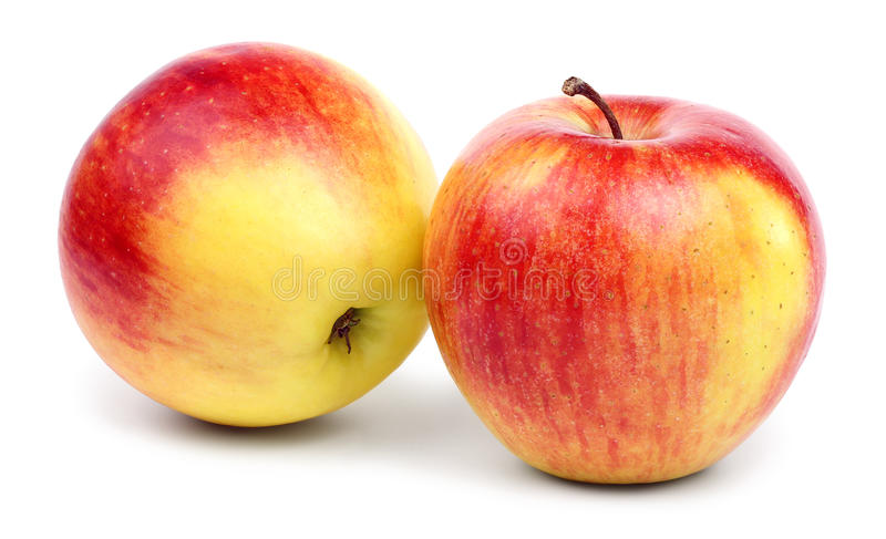 Two ripe red-yellow apples. royalty free stock photos