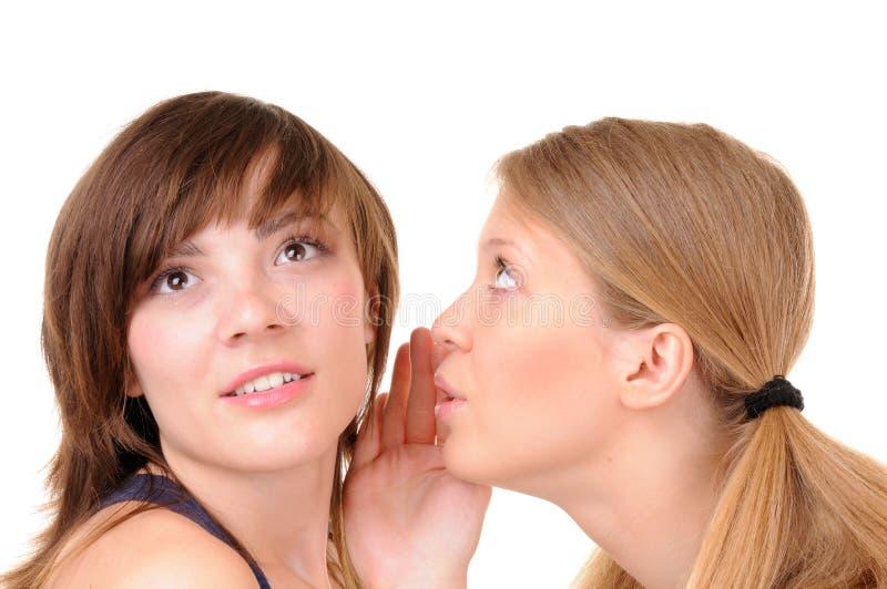 Download Two romantic gossips stock image. Image of gossip, cheerful - 14436407