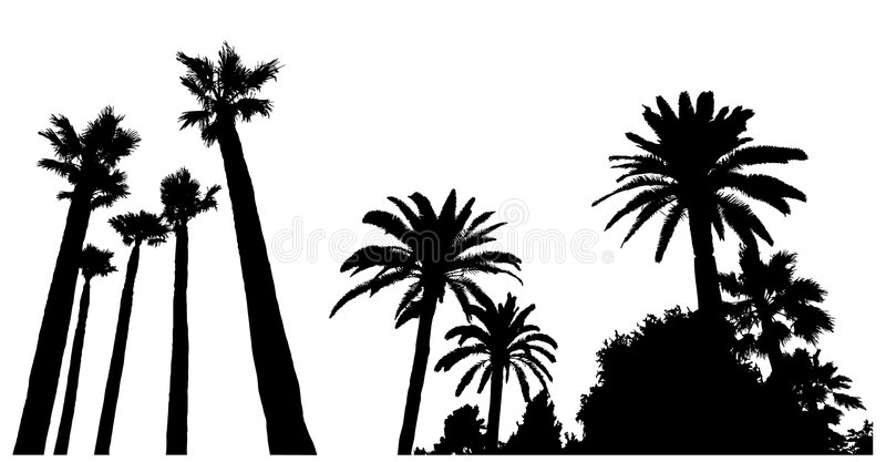 Download Two Scenes With Palm Tree Silhouettes Stock Vector - Image: 5733874