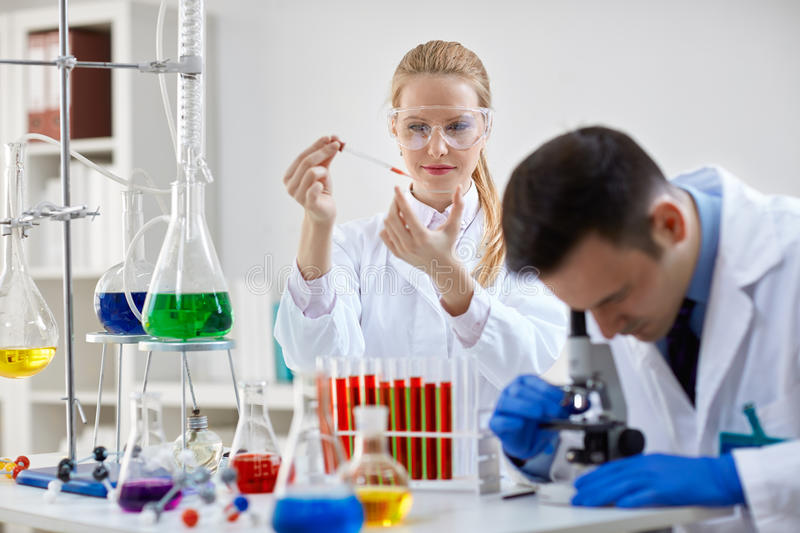 Two science technicians at work in the laboratory royalty free stock photography