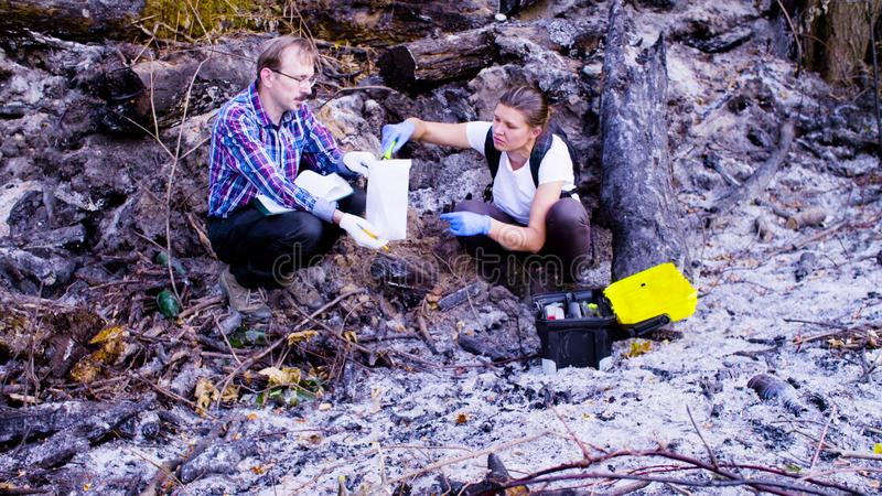 Two scientists ecologists working on place where the forest burned down. Two scientists ecologists working at the place where the forest burned down. Woman is royalty free stock images