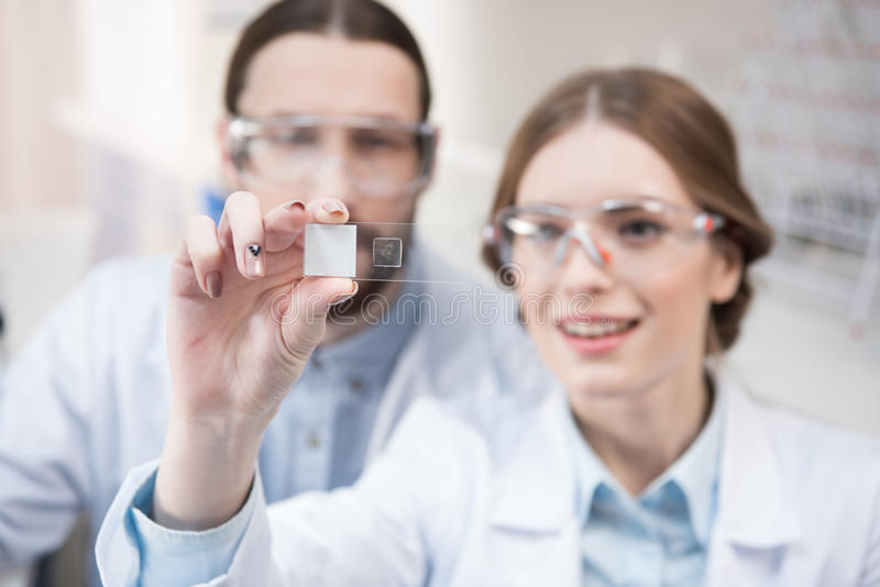 Two scientists at work royalty free stock photos