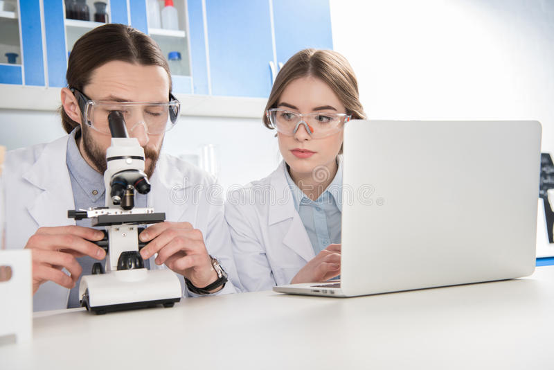 Two scientists working royalty free stock images