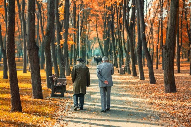 Two senior friends man walking along beautiful colorful autumn city park. Pair of old age persons talking during walk at beautiful stock images