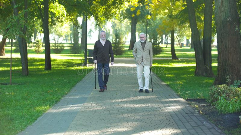Two senior men with walking sticks strolling along park, resting, retirement. Stock photo royalty free stock photography