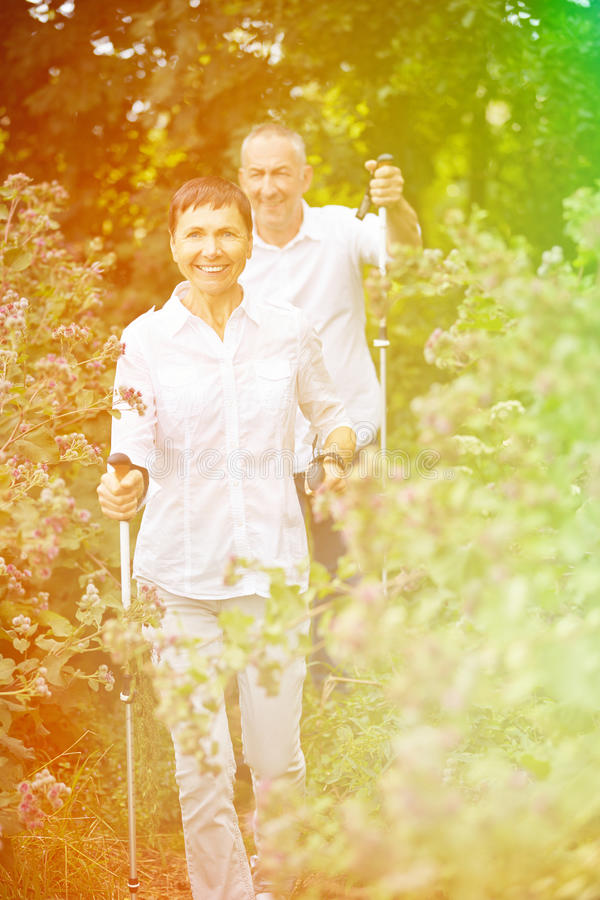 Two senior people walking in nature. Two happy senior people walking in nature in summer stock images