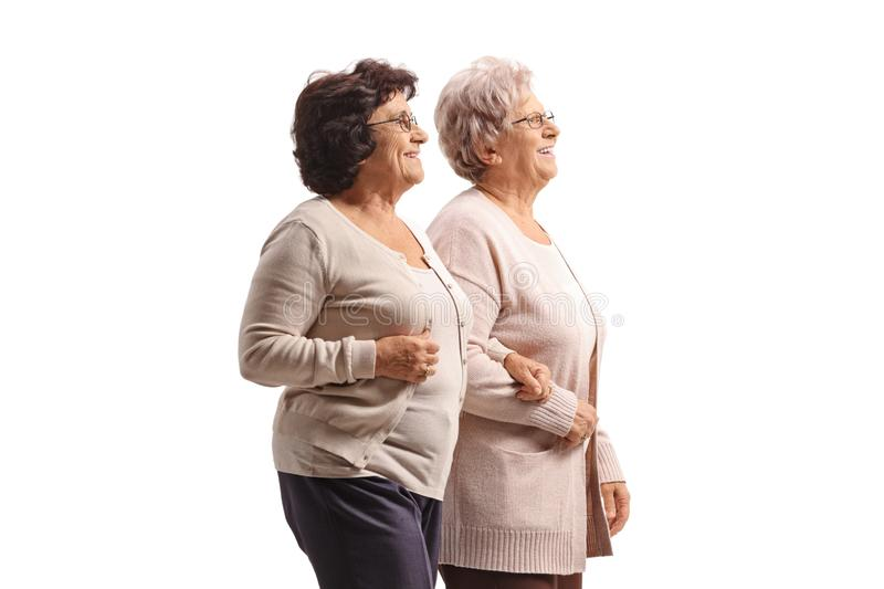 Two senior women walking together hand by hand. Isolated on white background royalty free stock images