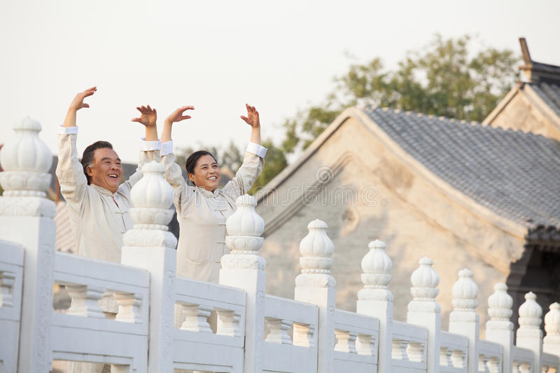 Two seniors practicing Taijiquan in Beijing royalty free stock photography
