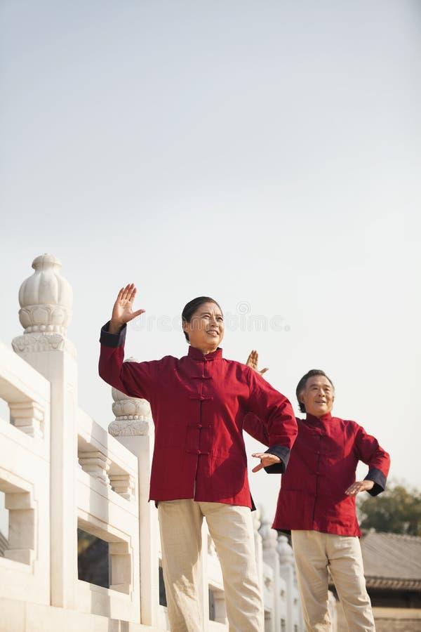 Two seniors practicing Taijiquan in Beijing royalty free stock image