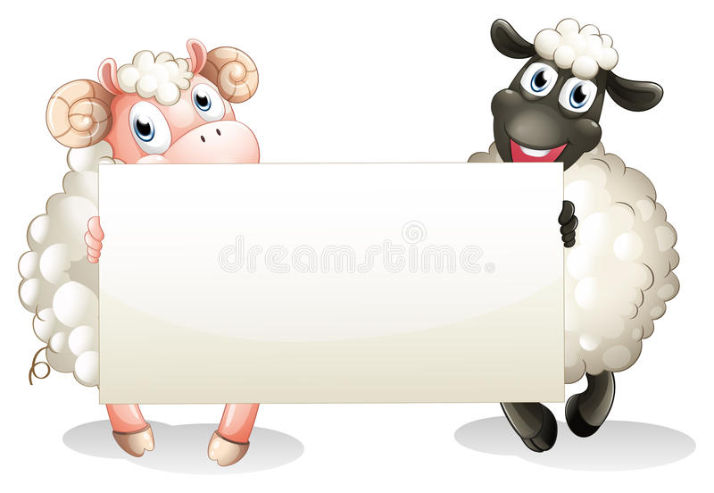 Two sheeps holding an empty banner royalty free illustration