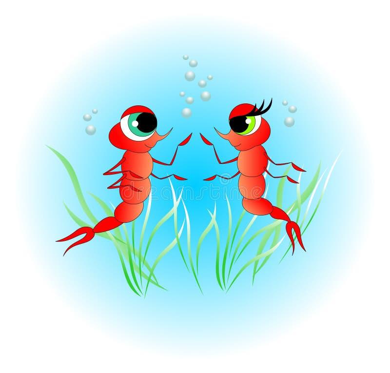 Shrimp Stock Illustrations 28,258 Shrimp Stock