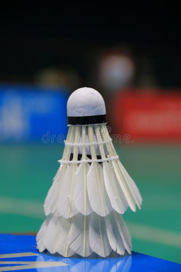 Two shuttlecocks in the side of badminton court stock photo